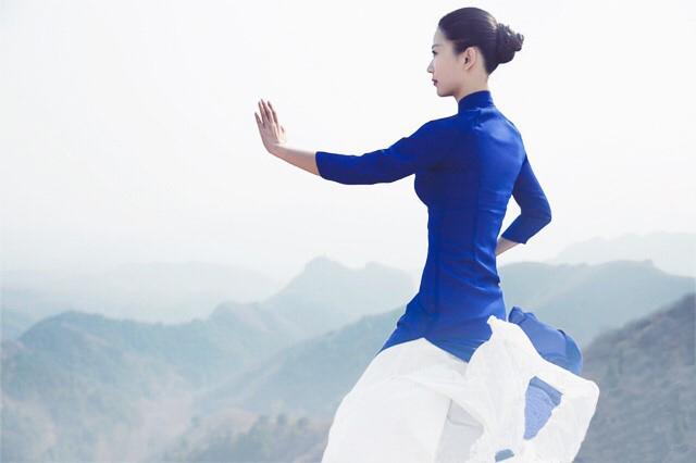 Association equilibrium - Tai Chi - Zhi Neng Qi Gong- Qi Gon Cours ateliers